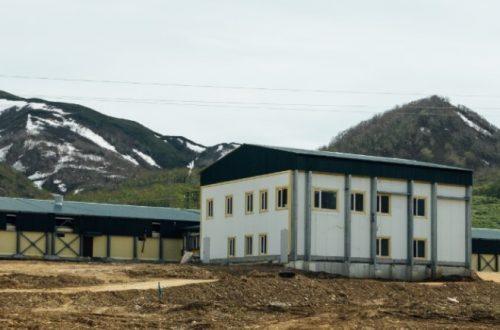 kamchatskim-selkhoztovaroproizvoditelyam-dostupny-70-mer-gosudarstvennojj-podderzhki