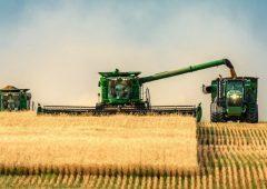Аграрии Камчатского края могут получить до 3 миллионов рублей в рамках национального проекта