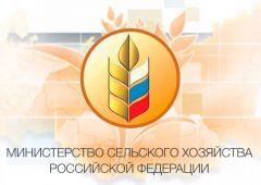 Итоговое заседание КоллегииМинсельхоза России за 2019 год в прямом эфире