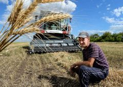 Государственная поддержка фермеров – один из приоритетов бюджета в сфере сельского хозяйства