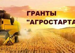 Прием заявок на конкурс грантов для начинающих сельхозпроизводителей стартует в апреле