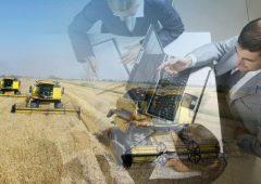 Сельскохозяйственным предприятиям возмещают часть затрат на обучение квалифицированных кадров
