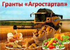 5 начинающих сельхозпроизводителей подали заявки на грант «Агростартап»